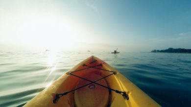 Canoeing and Kayaking in the Sheer Beauty of Panama