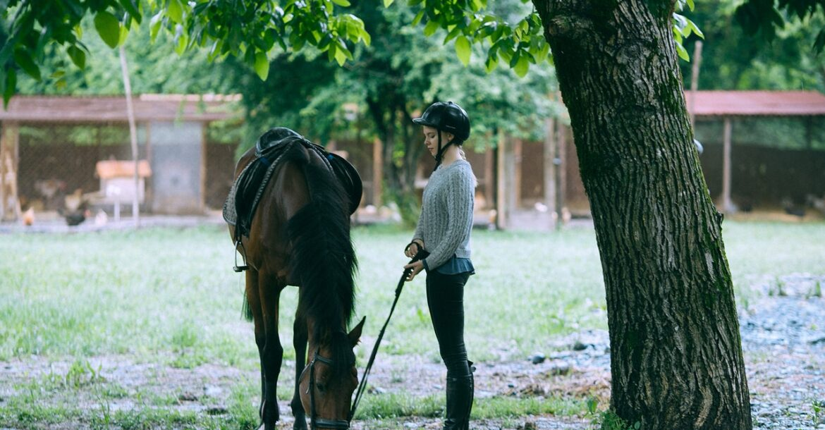 Horse riding: safety equipment